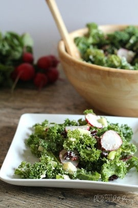 Autumn Kale Salad 6