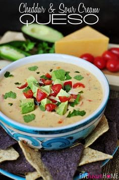 Cheddar & Sour Cream Queso