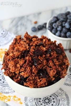 Coconut Blueberry Pecan Granola 2