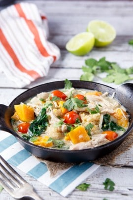 IMG_1361-425 of the Best Healthy Crock Pot Recipes out there! | www.joyfulhealthyeats.com
