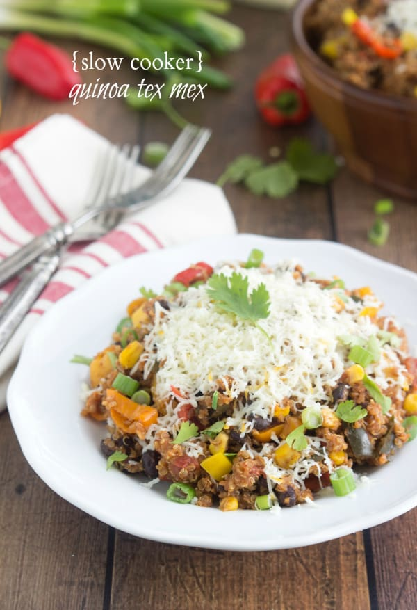 A Bowl of Slow Cooker Quinoa Tex Mex Topped with Parmesan Cheese