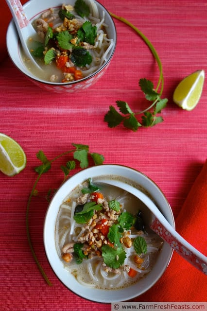 Two Bowls of Thai Inspired Creamy Chicken Noodle Soup Next to Two Lime Wedges