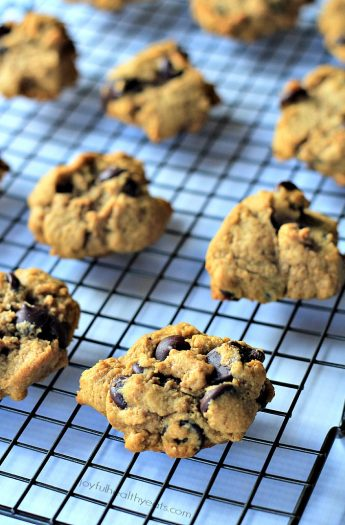Image of Healthy Pumpkin Chocolate Chip Cookies