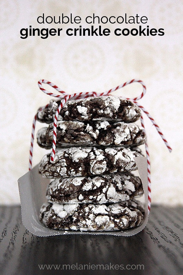 A Stack of Double Chocolate Ginger Crinkle Cookies Wrapped in Parchment Paper