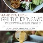 Harissa Lime Grilled Chicken Salad Recipe + Cilantro Lime Vinaigrette