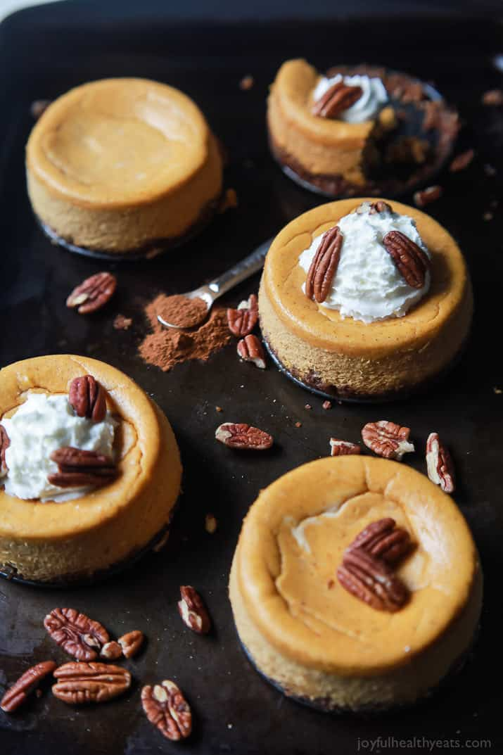 Skinny Mini Pumpkin Cheesecake With Pecan Crust Mini Cheesecake Recipe Pumpkin Recipes Holiday