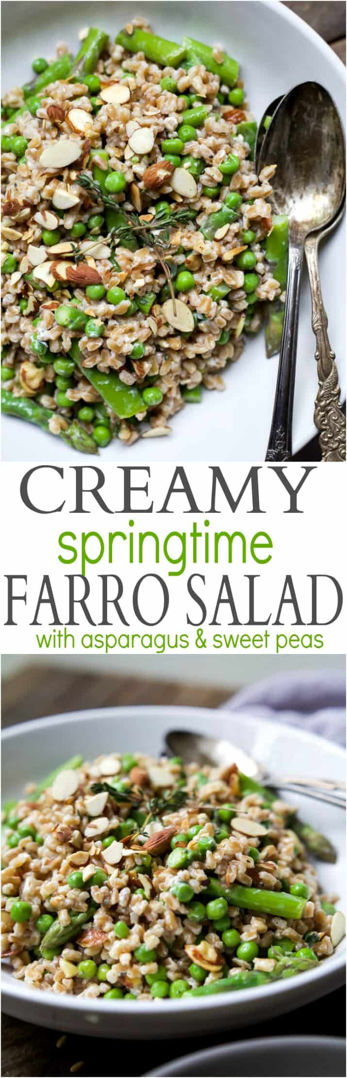 Creamy Springtime Farro Salad for the win! The perfect side dish filled with sweet peas, asparagus, fresh herbs and goat cheese! I guarantee you'll be addicted after the first bite! | joyfulhealthyeats.com