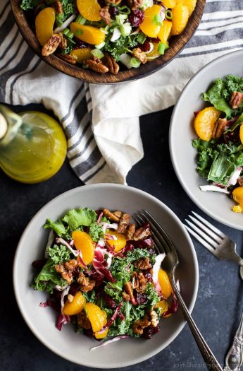 A simple KALE SALAD filled with mandarin oranges, tart cranberries and candied pecans for the perfect bite! I guarantee this salad will win over any kale hater and become a staple at your house! | joyfulhealthyeats.com #glutenfree