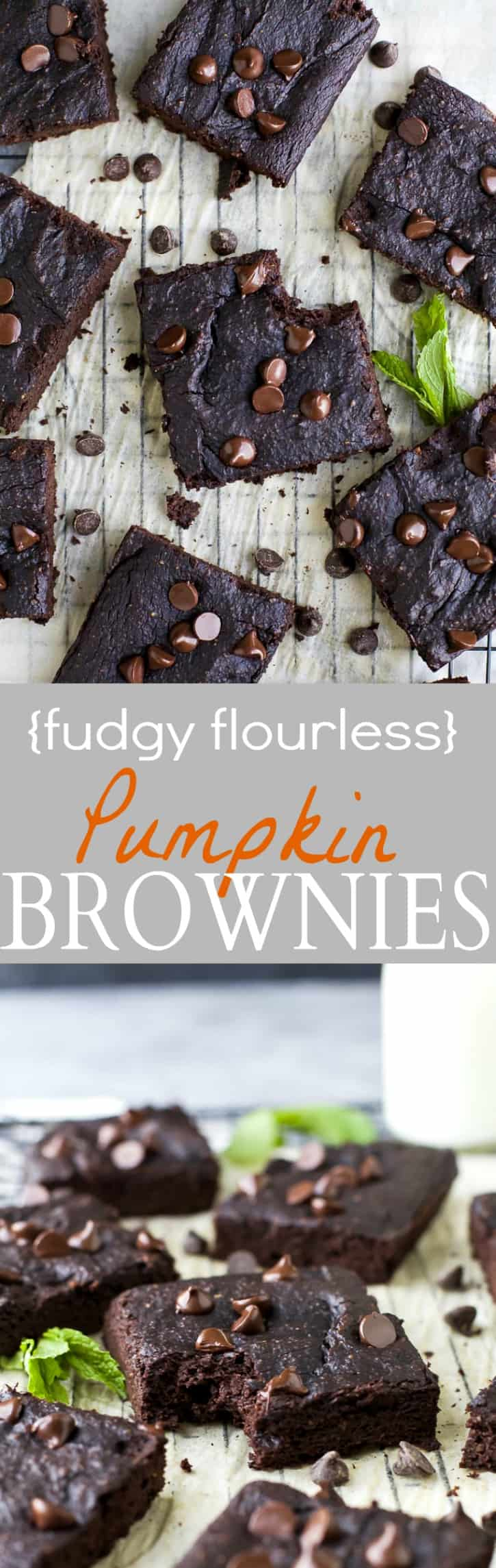 Fudgy Flourless Pumpkin Brownies made with maple syrup, pumpkin puree, almond butter, and cocoa powder! These brownies are so fudgy you'll be shocked! It's the perfect guilt free dessert recipe this holiday season! | gluten free recipes