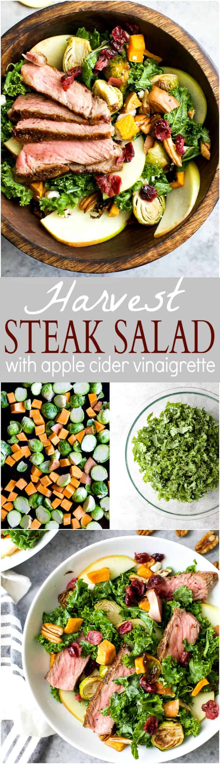 Harvest Steak Salad loaded with autumn vegetables and topped with a homemade Apple Cider Vinaigrette! This steak salad is the perfect fall inspired dinner your family will love!