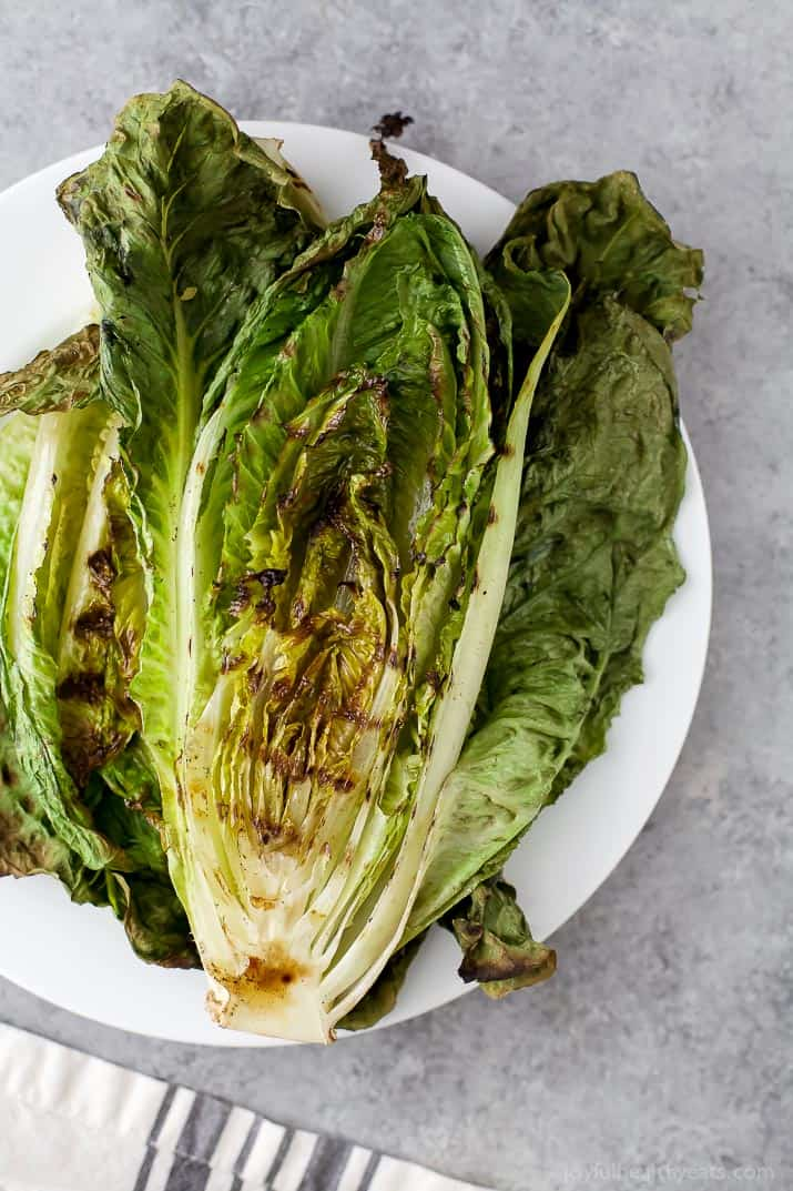 Top view of grilled romaine lettuce leaves on a plate