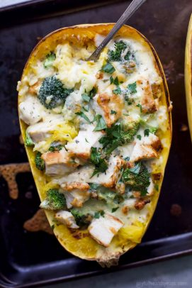 chicken alfredo stuffed spaghetti squash
