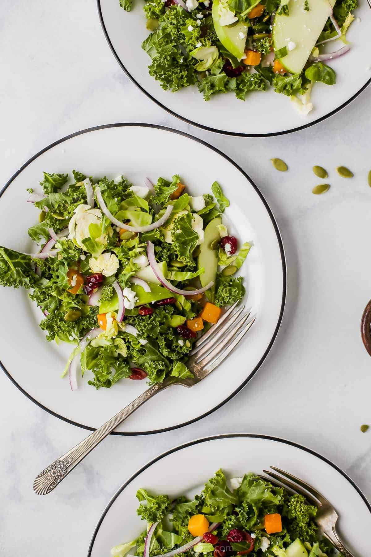 cranberry apple brussel sprout salad on a plate with a fork