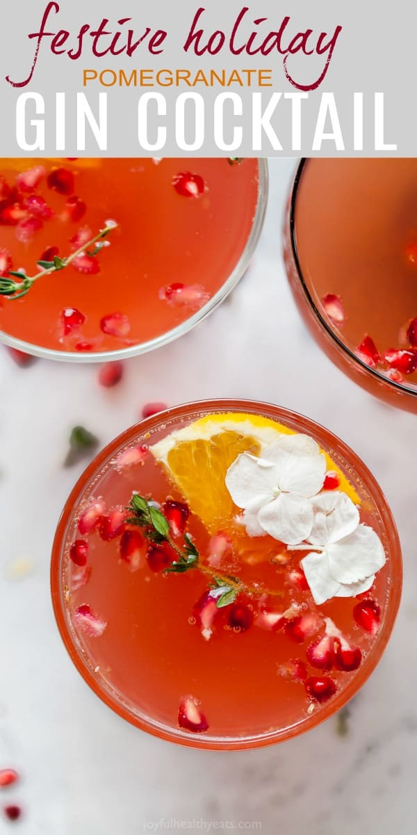 holiday pomegranate gin cocktail pinterest pin