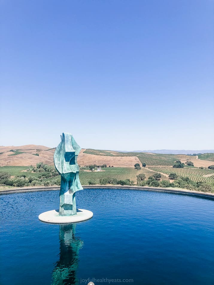 fountains and overlooking vineyards at artesa winery in napa valley california