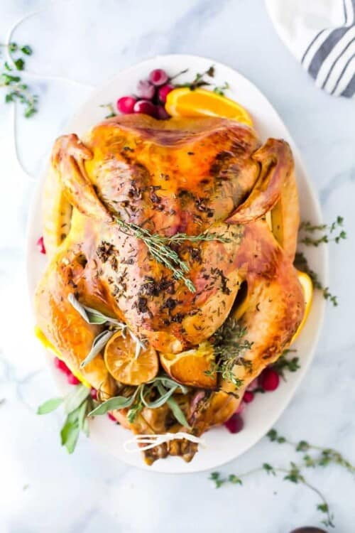 overhead photo of roasted turkey