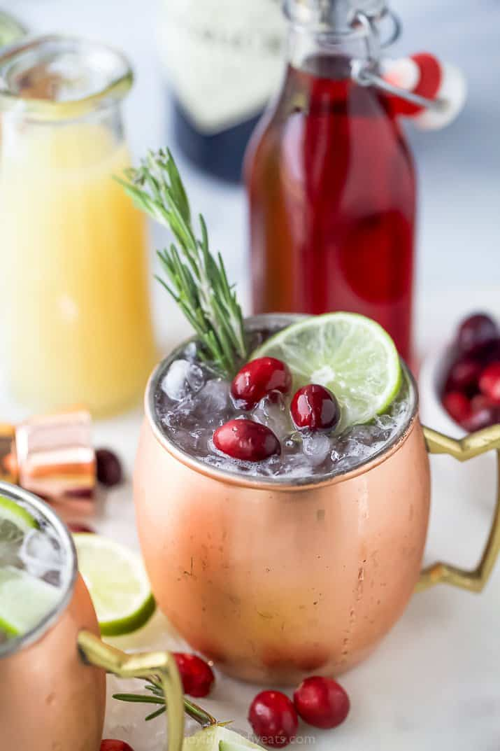 copper cup filled with cranberry gin moscow mule
