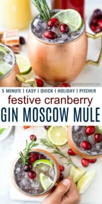 pinterest image for 5 minute cranberry gin moscow mule